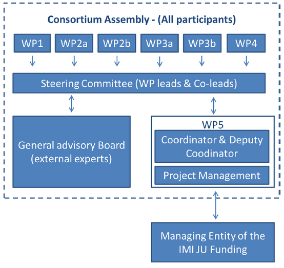 governance-structure